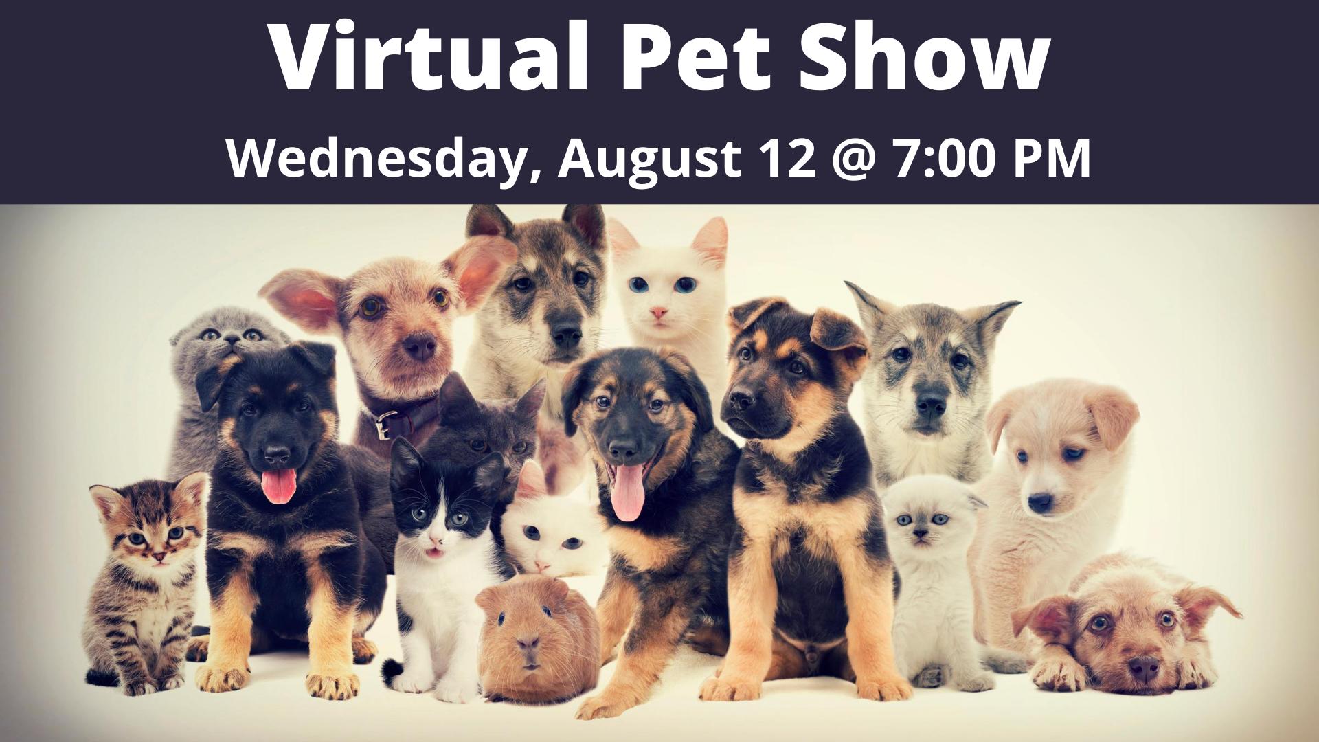 Virtual Pet Show