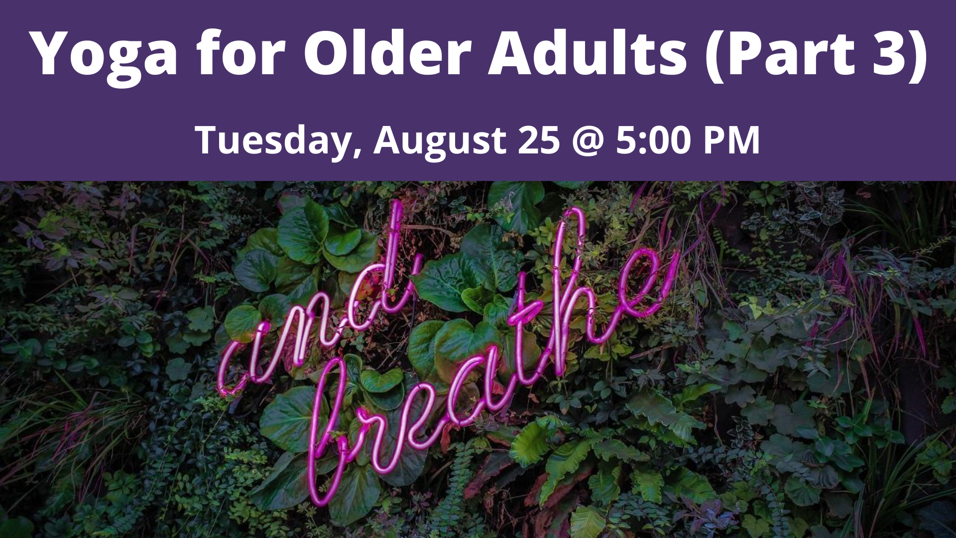 Yoga for Older Adults (Part 3)