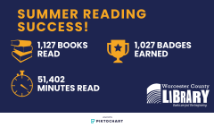 Facts about summer reading